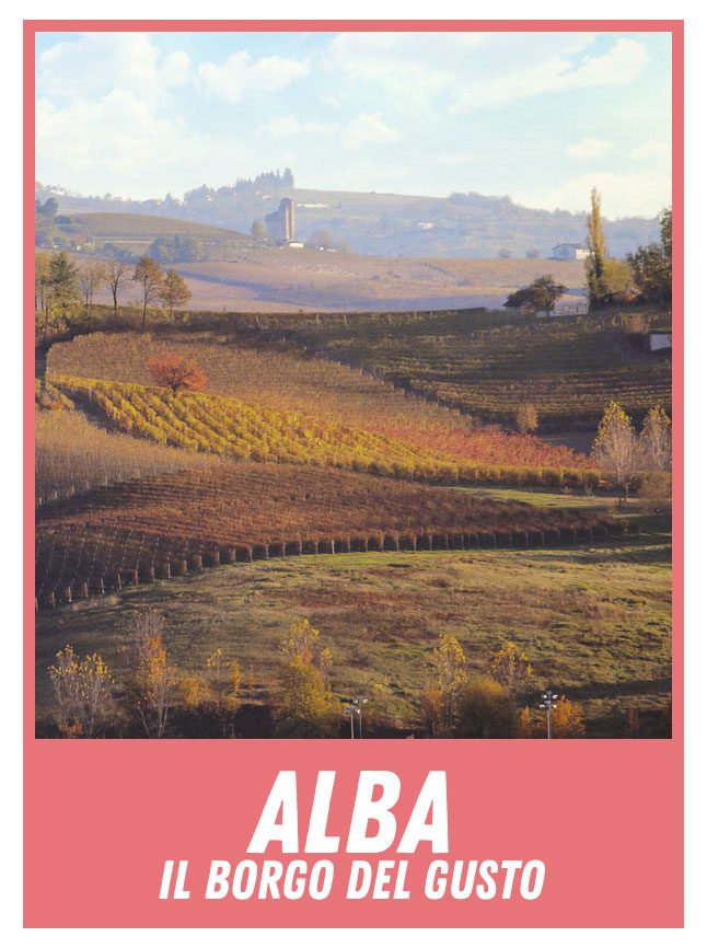 home-alba-small