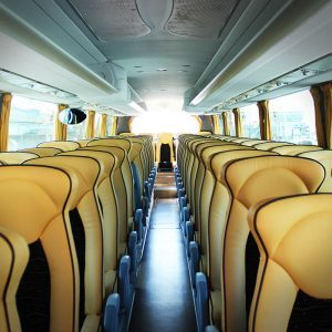 Il Viaggio in Bus - Vacanze per Giovani